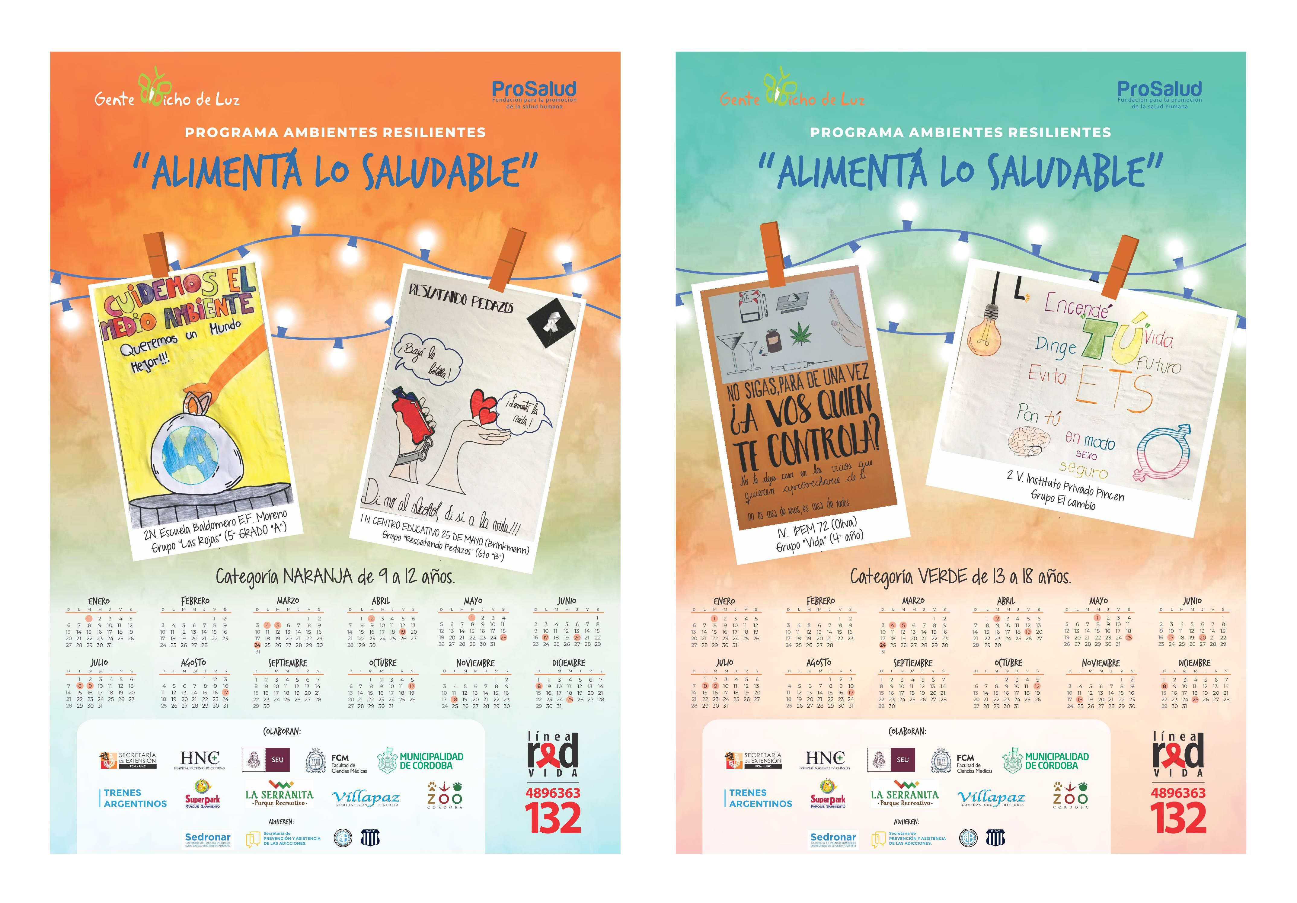 Calendario Bichichitos de Luz - FINAL